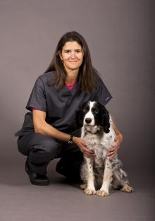 ECVS - European College of Veterinary Surgeons